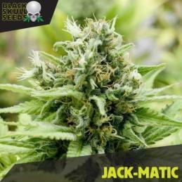 JACK-MATIC