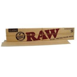 Raw Gigante - Sativagrowshop.com