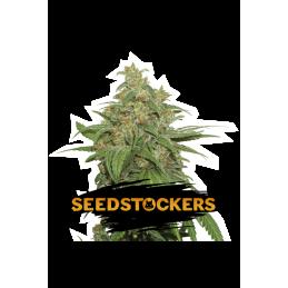 AK 420 - Sativagrowshop.com