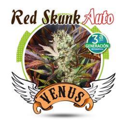 Red Skunk AUTO
