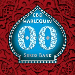 Harlequin CBD