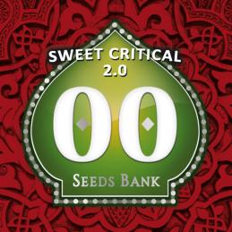 Sweet Critical 2.0