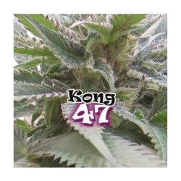 FLORACOCO GROW 0.5 L * GENERAL HIDROPONICS - Imagen 1