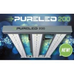 PURE LED 200W