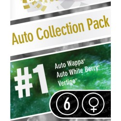 Auto Collection pack No-1