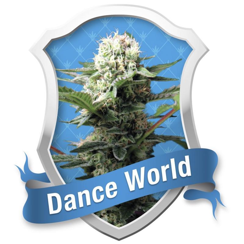 DANCE WORLD ROYAL QUEEN