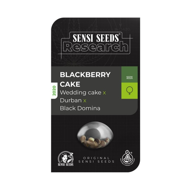 Blackberry cake SENSI SEEDS RESEARCH