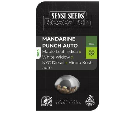 Mandarine Punch Auto sensi seeds research