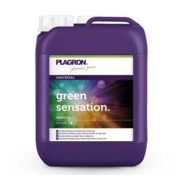 Green Sensation 5L