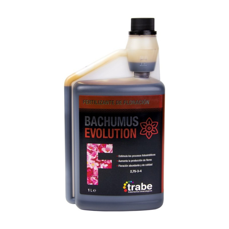 Bachumus Evolution floración 1L